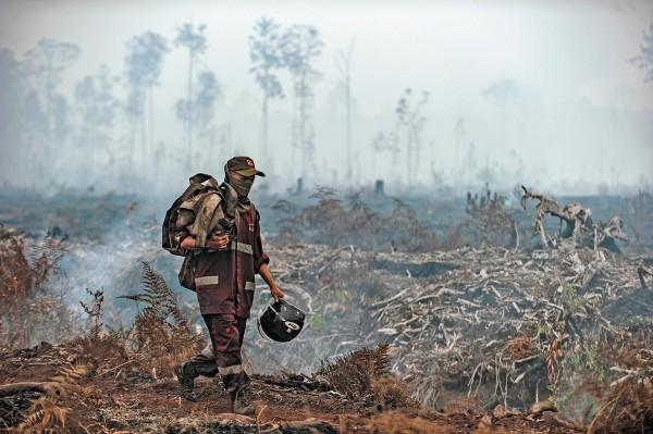 AMAZONIA. En esta temporada; los incendios en ese pulmón del mundo se expandieron. Foto: AP