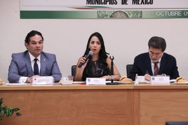 seguridad_presupuesto_presidentes_municipales_alcaldes_diputados