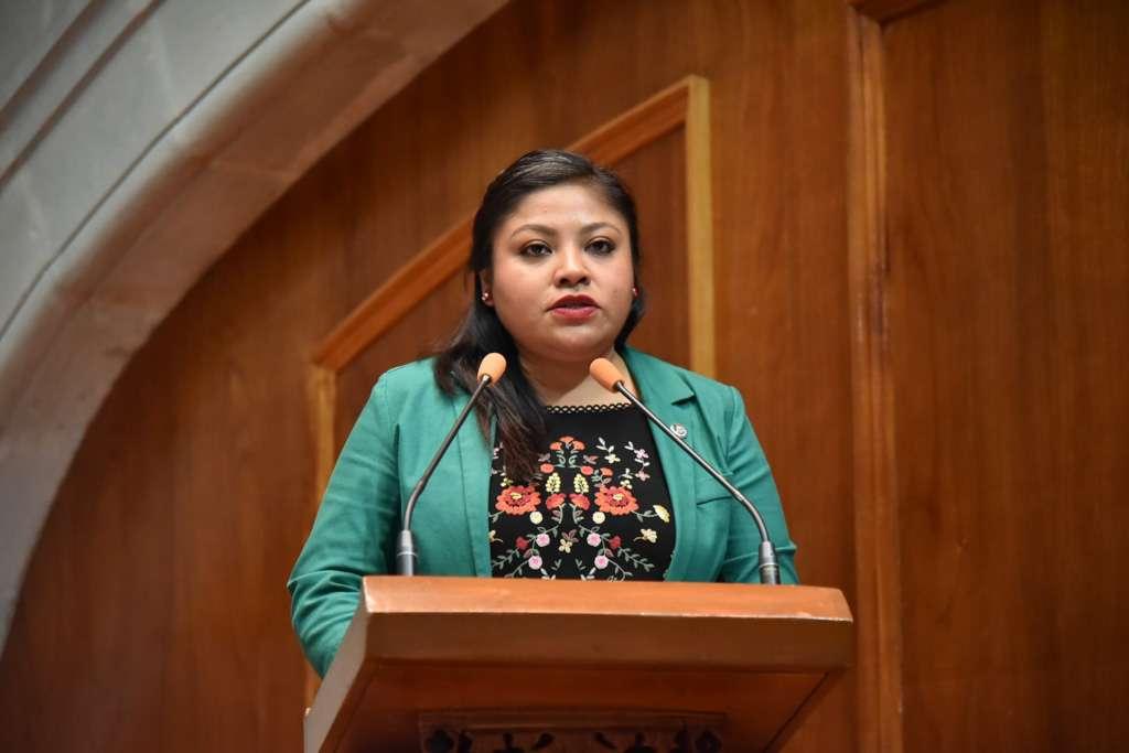 TRANSFORMACIÓN. La diputada Anaís Miriam Burgos presentó la iniciativa al Congreso. Foto: Especial