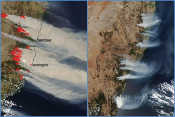 Incendios en Australia vistos desde el espacio. Foto: Especial