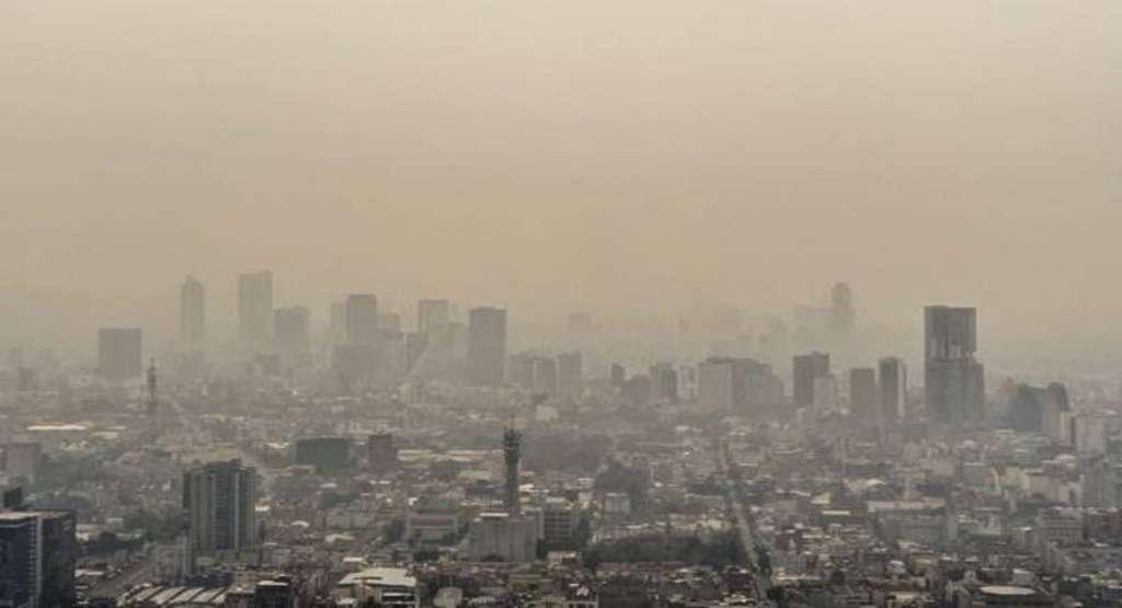 contaminacion_alergias_rinitis_enfermedades_sistema_inmonologico