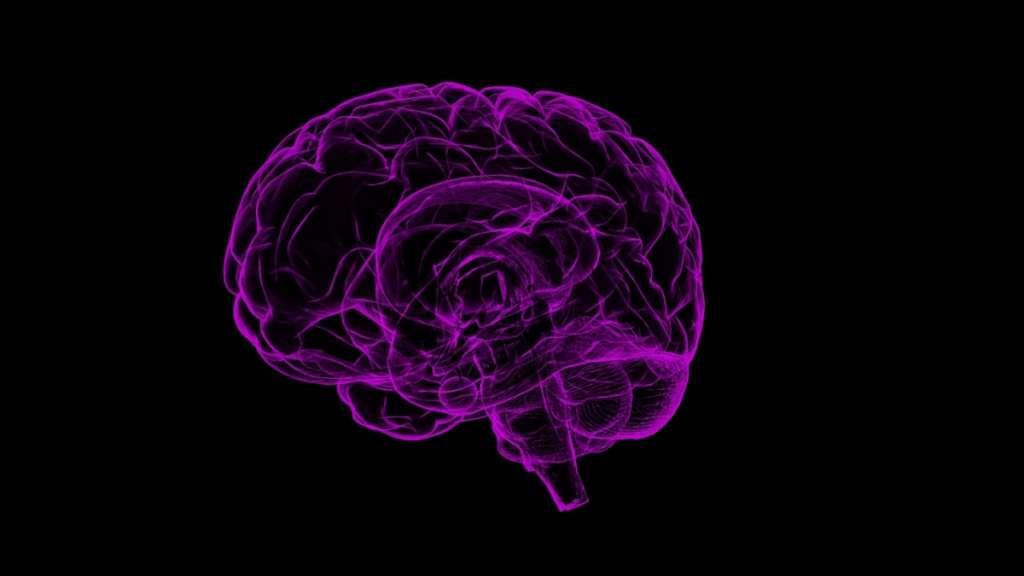 Tu cerebro sufre por no escribir a mano. Foto: Pixabay