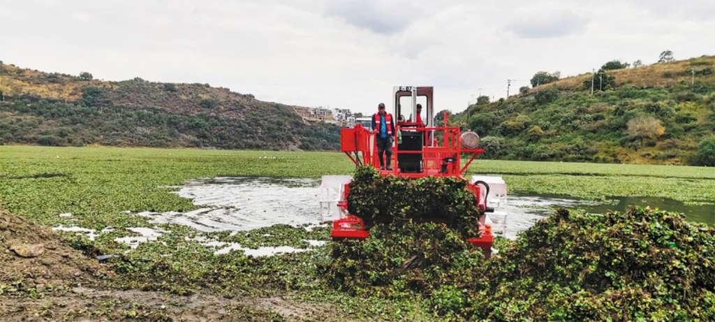 EQUIPO. Una máquina cosechadora es la única que hace el trabajo. Foto: Leticia Ríos