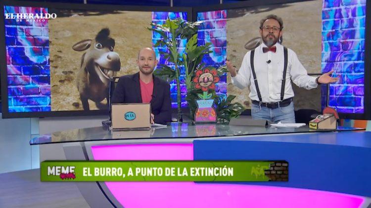 Meme-News-Enrique-Alcocer1