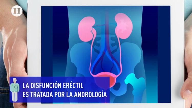 disfuncion-erectil-eyaculacion-precoz-salud-sexual-masculina-andrologia-codigo-salud