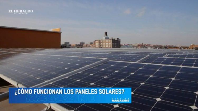 paneles solares_entrevista