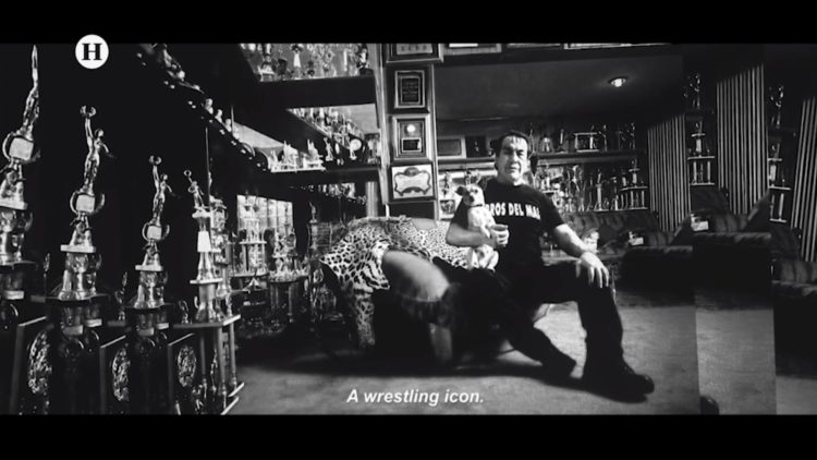 lucha libre Perro Aguayo El Heraldo TV documental
