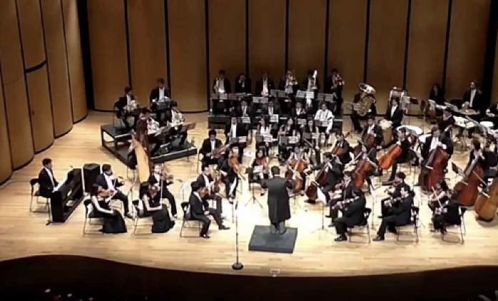 Orquesta Camarata Opus 11