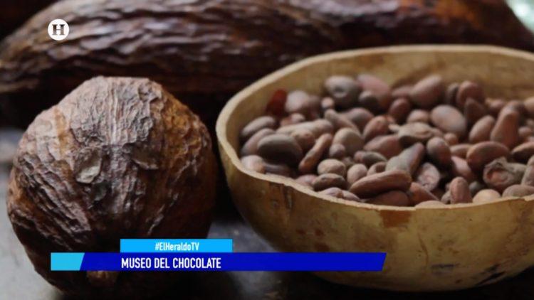 Museo Chocolate reportaje El Heraldo TV